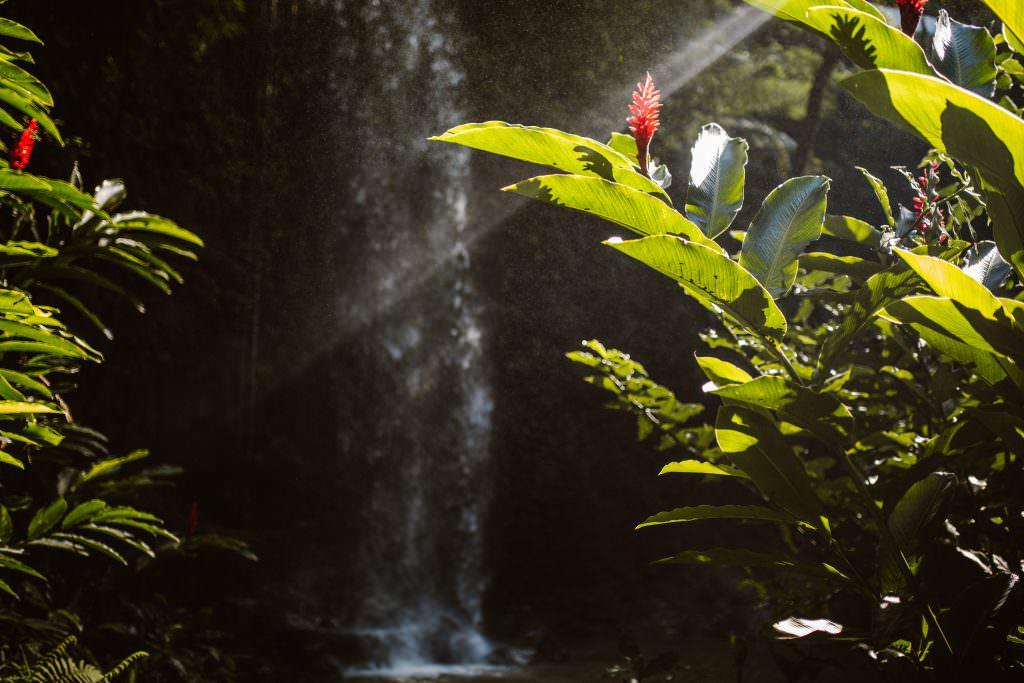 Kalihiwai waterfall wedding, aloha wedding, hawaii destination wedding, hawaii wedding photography, kauai wedding photographer, kauai wedding photography, hawaii, hawaii weddings, go hawaii, hidden hawaii, hawaii elopement, kauai elopement, Kalihiwai Beach, Kalihiwai waterfall, haena beach, haena beach wedding, kauaiwedding, kauai wedding,