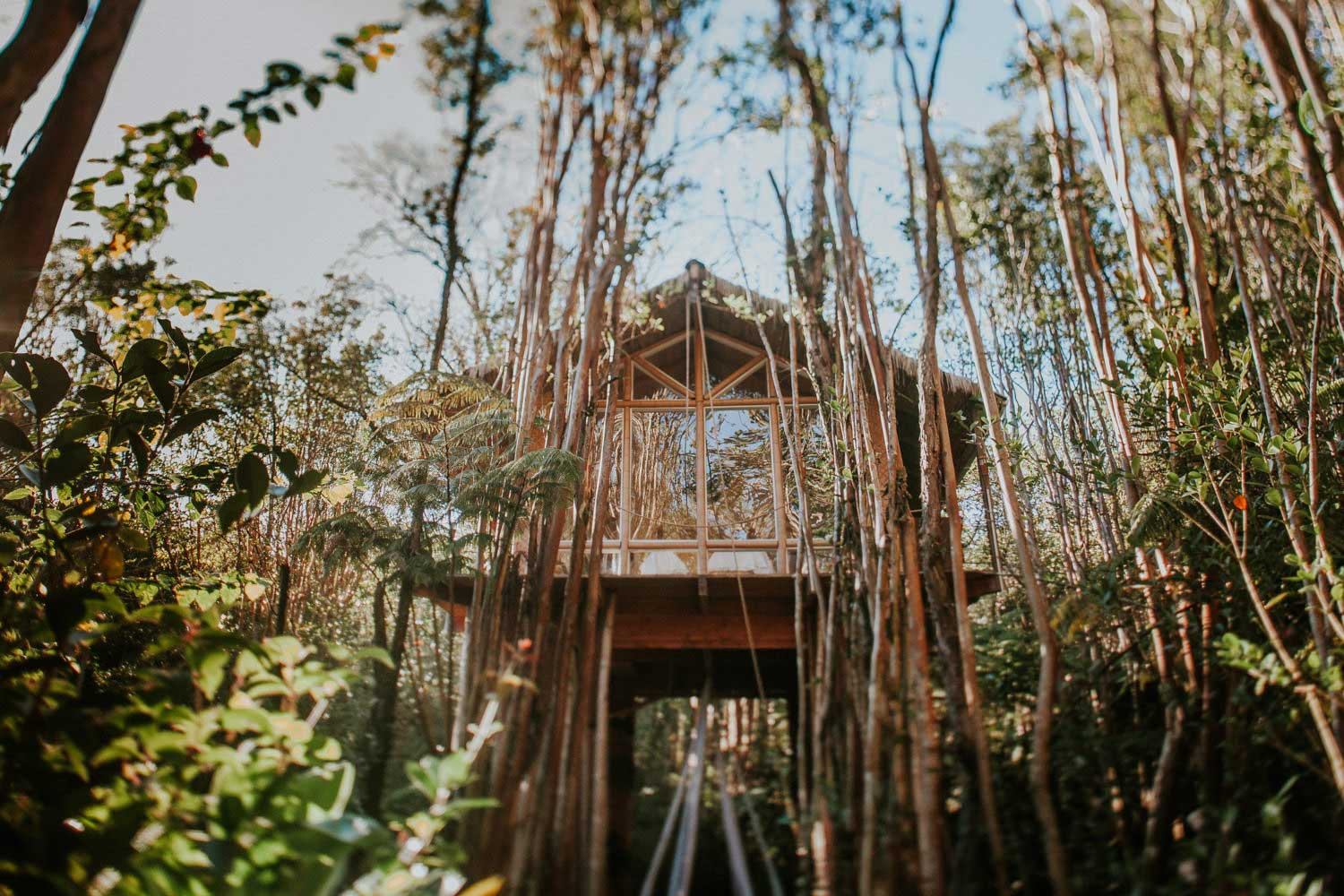 tree house treehouse elopement, treehouse big island, big island airbnb, big island local guide, big island vacation, kona elopement, hawaii big island elopement