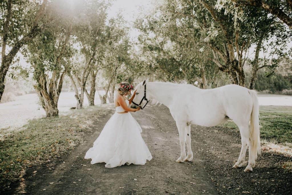hawaii ranch wedding, hawaii horses, hawaii wedding horses, puakea ranch wedding photos, hawai wedding photos, kohala wedding, hawi wedding, hawaii ranch wedding, elopement hawaii
